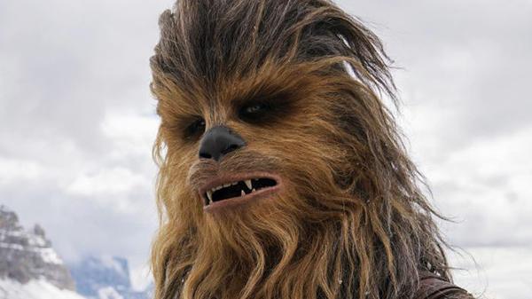 Chewbacca sm